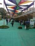 Workshop on Greening your Home @Karmakonsum Green Festival